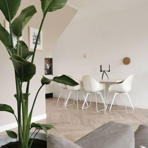 Welke vloer combineer je met een minimalistisch interieur?