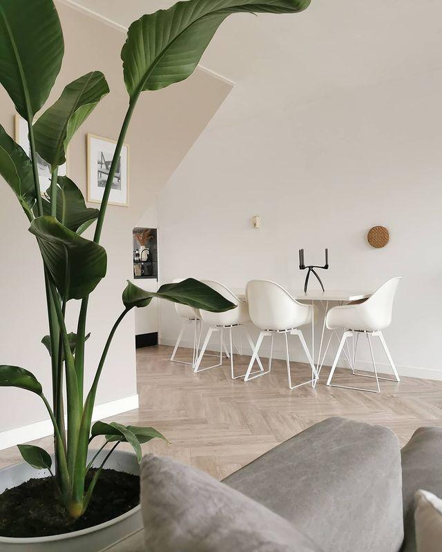 Floer-Visgraat-PVC-vloer-Onbehandeld-Eiken-woonkamer-interieur-minimalistisch interieur